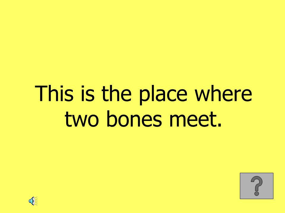 This is the place where two bones meet.