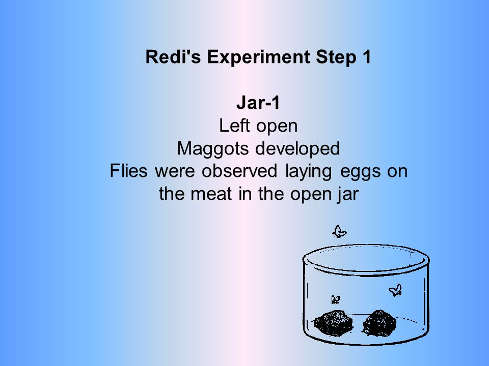 Redi s Problem Where do maggots come from. Hypothesis: Maggots come from flies.