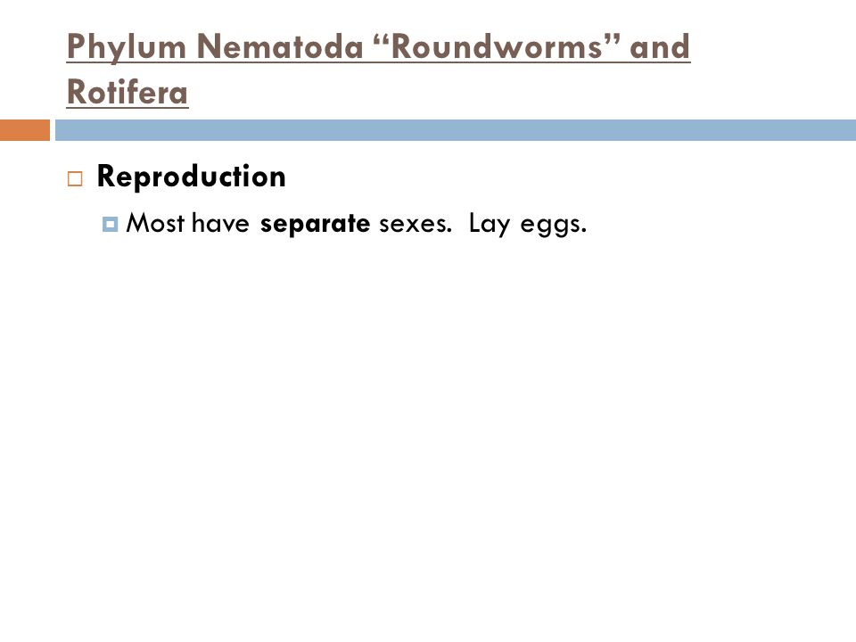 Phylum Nematoda Roundworms and Rotifera Reproduction Most have separate sexes. Lay eggs.