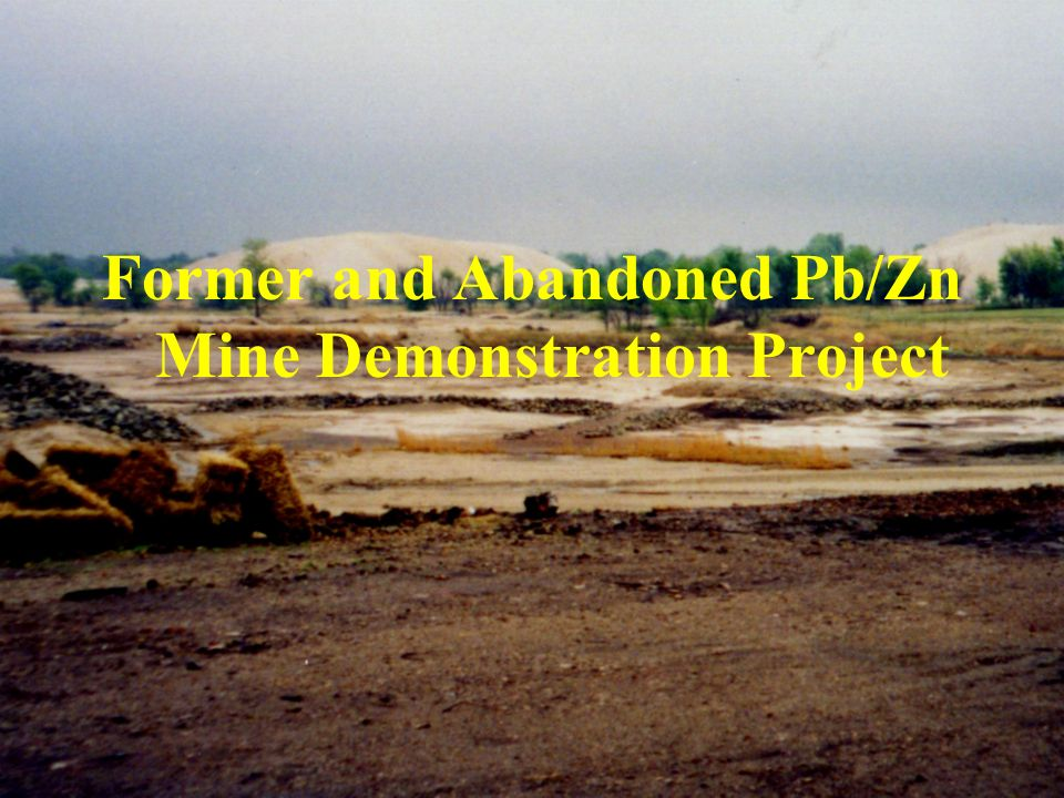 Former and Abandoned Pb/Zn Mine Demonstration Project