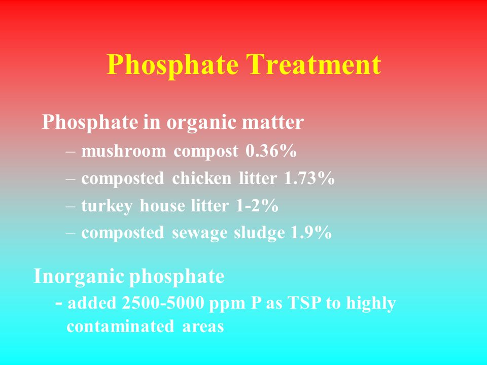 Phosphate Treatment Phosphate in organic matter –mushroom compost 0.36% –composted chicken litter 1.73% –turkey house litter 1-2% –composted sewage sludge 1.9% Inorganic phosphate - added 2500-5000 ppm P as TSP to highly contaminated areas