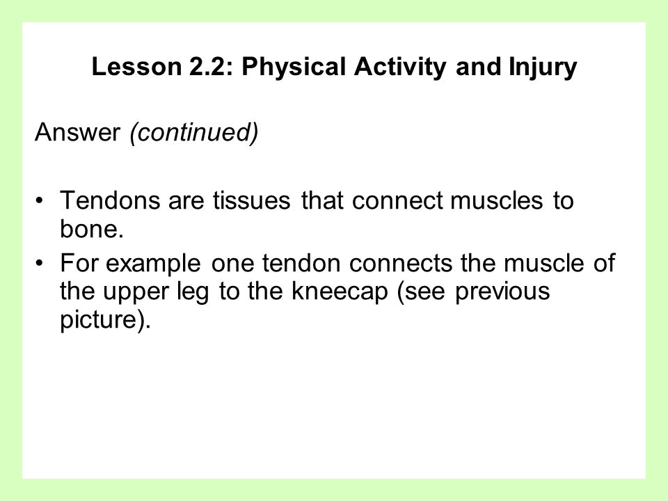 Lesson 2.2: Physical Activity and Injury Answer (continued) Tendons are tissues that connect muscles to bone. For example one tendon connects the musc