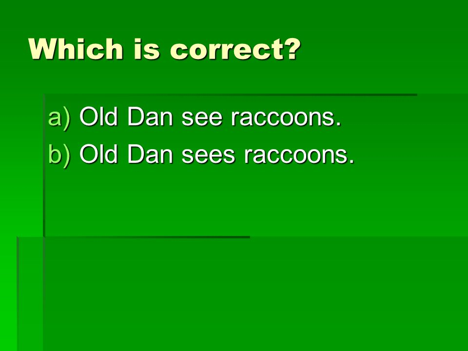 Which is correct a)Old Dan see raccoons. b)Old Dan sees raccoons.