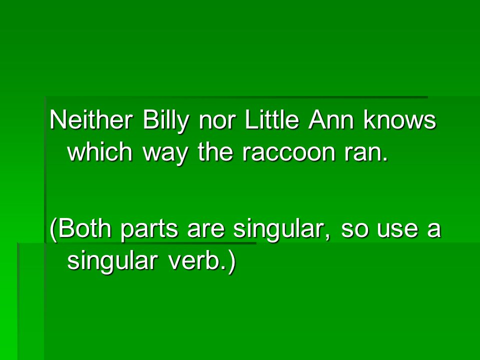 Neither Billy nor Little Ann knows which way the raccoon ran.