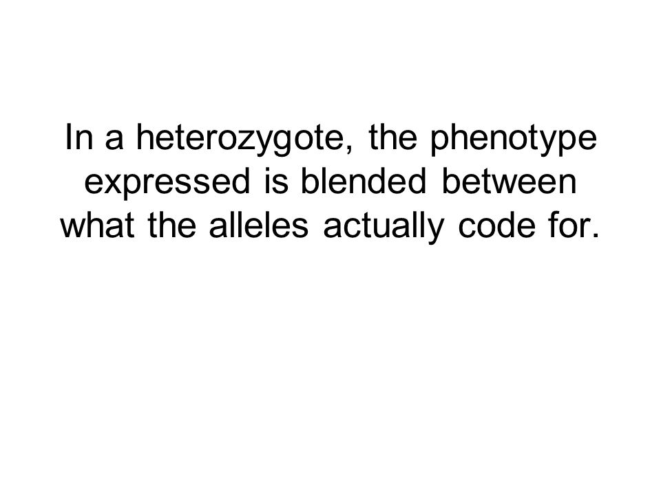 In a heterozygote, the phenotype expressed is blended between what the alleles actually code for.