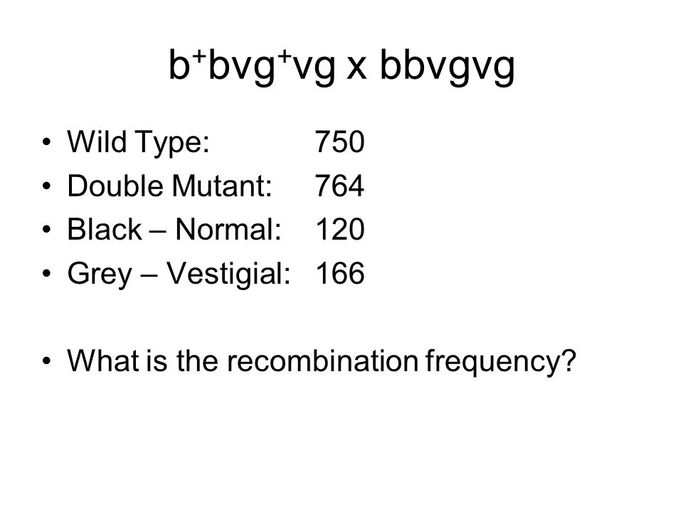 b + bvg + vg x bbvgvg Wild Type: 750 Double Mutant:764 Black – Normal:120 Grey – Vestigial: 166 What is the recombination frequency?