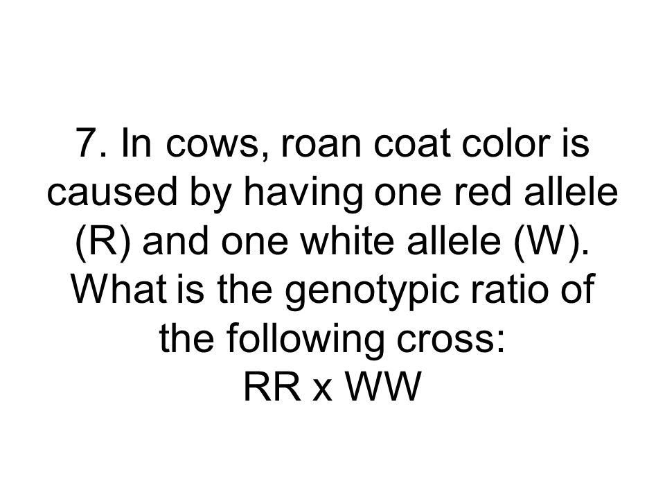 7. In cows, roan coat color is caused by having one red allele (R) and one white allele (W). What is the genotypic ratio of the following cross: RR x