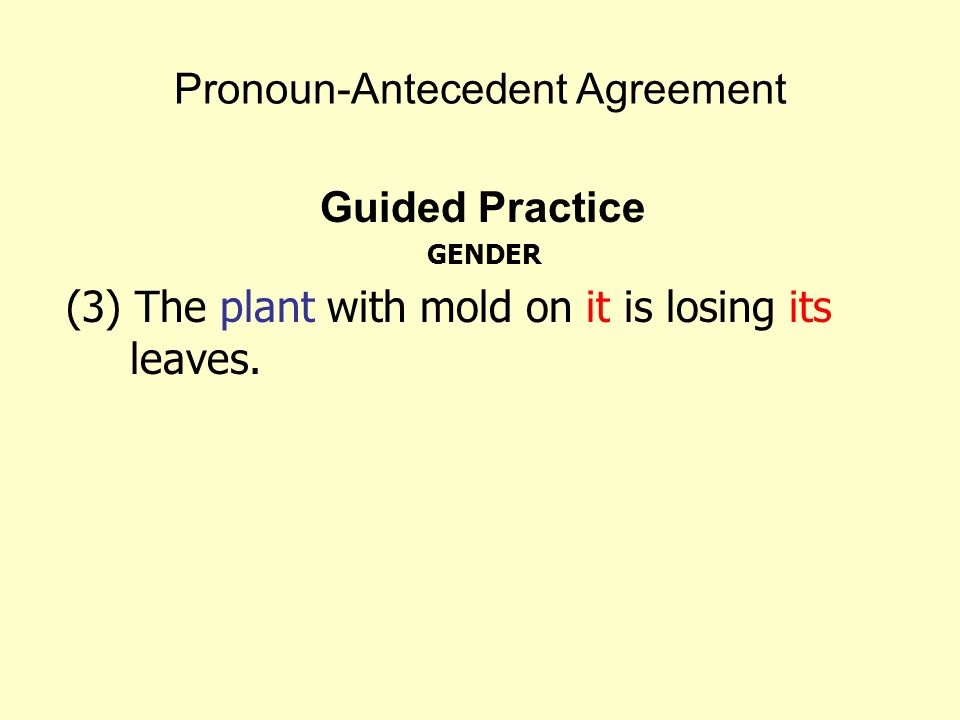 Pronoun-Antecedent Agreement Guided Practice GENDER (3) The plant with mold on it is losing its leaves.