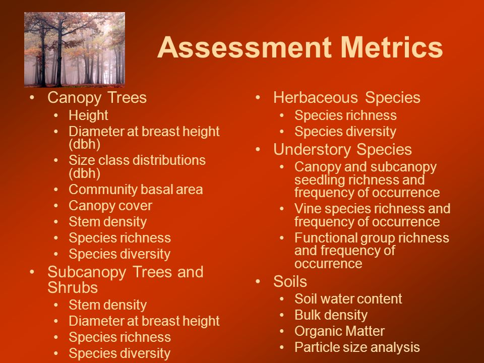 Assessment Metrics Canopy Trees Height Diameter at breast height (dbh) Size class distributions (dbh) Community basal area Canopy cover Stem density Species richness Species diversity Subcanopy Trees and Shrubs Stem density Diameter at breast height Species richness Species diversity Herbaceous Species Species richness Species diversity Understory Species Canopy and subcanopy seedling richness and frequency of occurrence Vine species richness and frequency of occurrence Functional group richness and frequency of occurrence Soils Soil water content Bulk density Organic Matter Particle size analysis