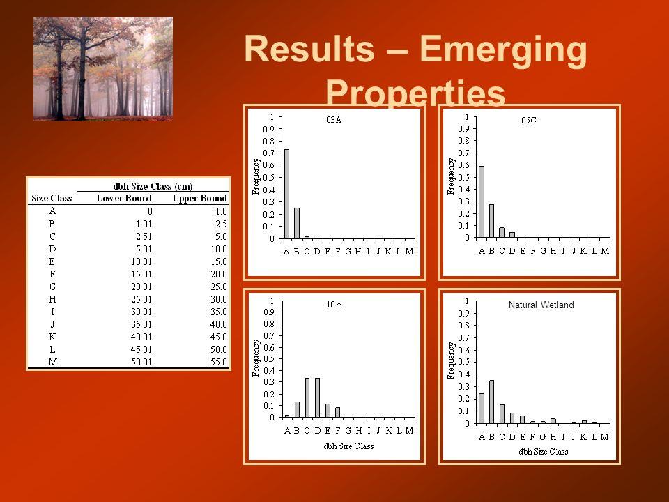 Results – Emerging Properties Natural Wetland