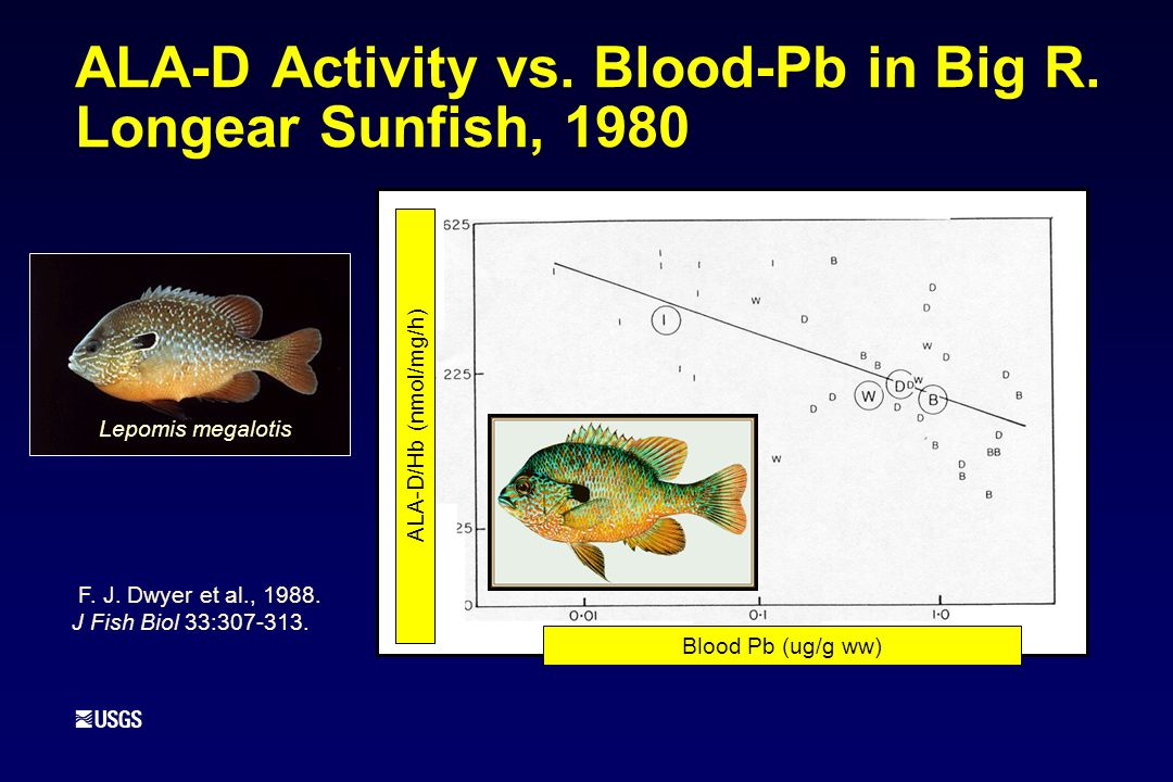 ALA-D Activity vs. Blood-Pb in Big R. Longear Sunfish, 1980 F.