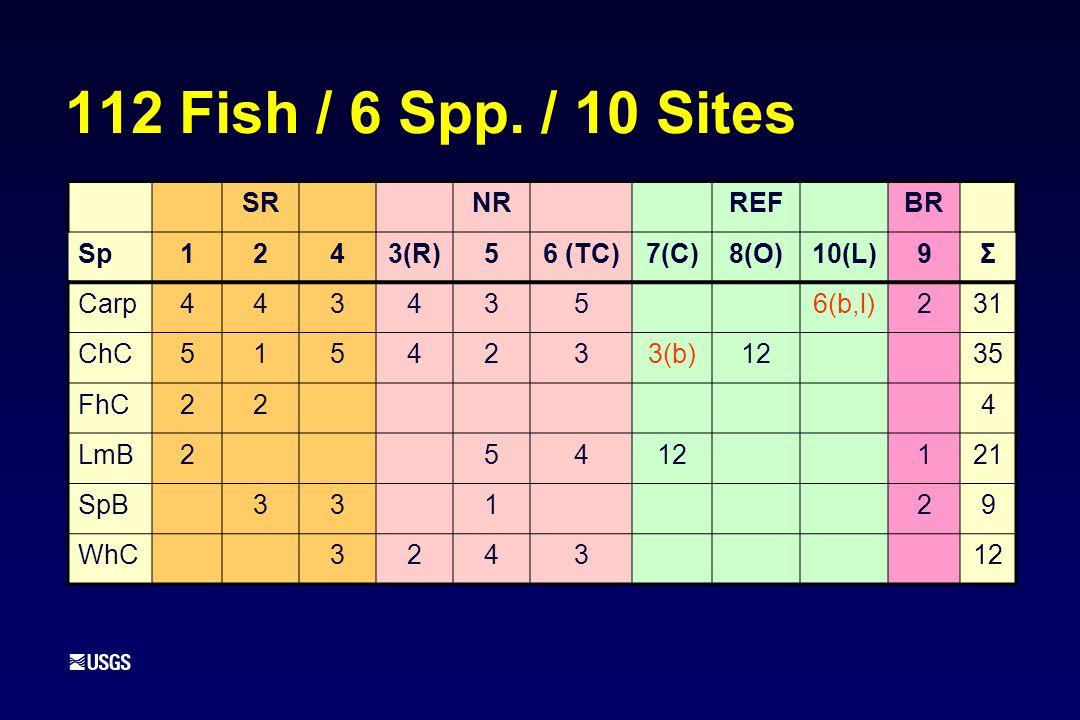 112 Fish / 6 Spp.