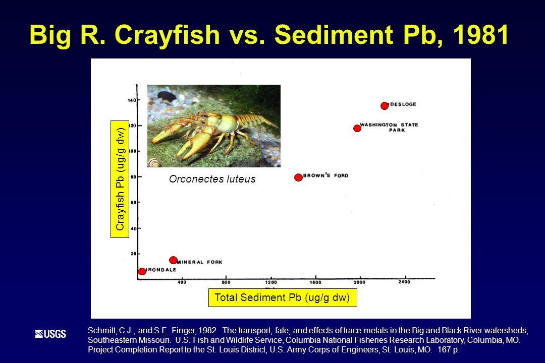 Big R.Crayfish vs.