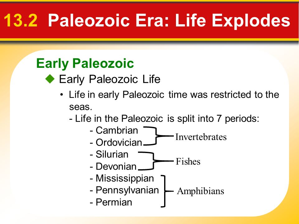Early Paleozoic 13.2 Paleozoic Era: Life Explodes Early Paleozoic Life Life in early Paleozoic time was restricted to the seas. - Life in the Paleozoi