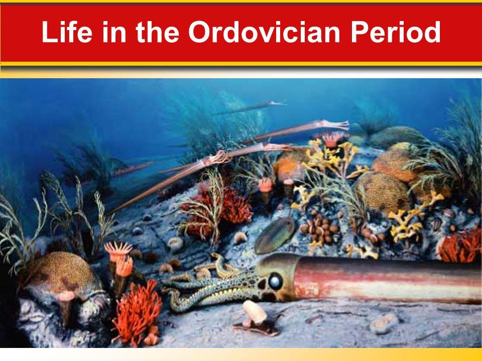 Life in the Ordovician Period
