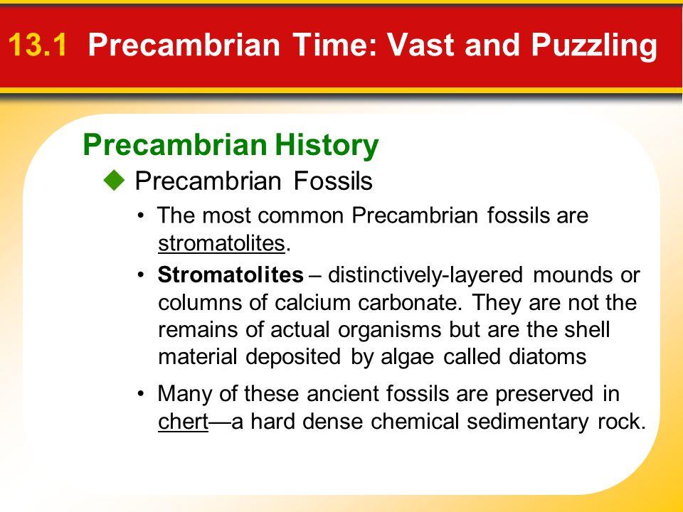 Precambrian History 13.1 Precambrian Time: Vast and Puzzling Precambrian Fossils The most common Precambrian fossils are stromatolites. Stromatolites
