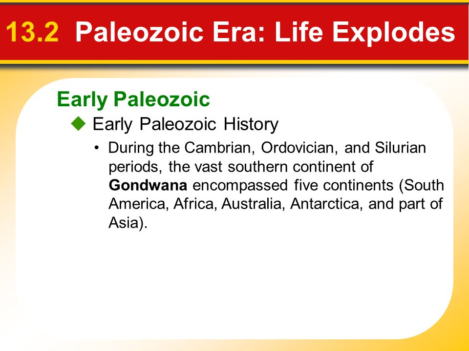 Early Paleozoic 13.2 Paleozoic Era: Life Explodes Early Paleozoic History During the Cambrian, Ordovician, and Silurian periods, the vast southern con