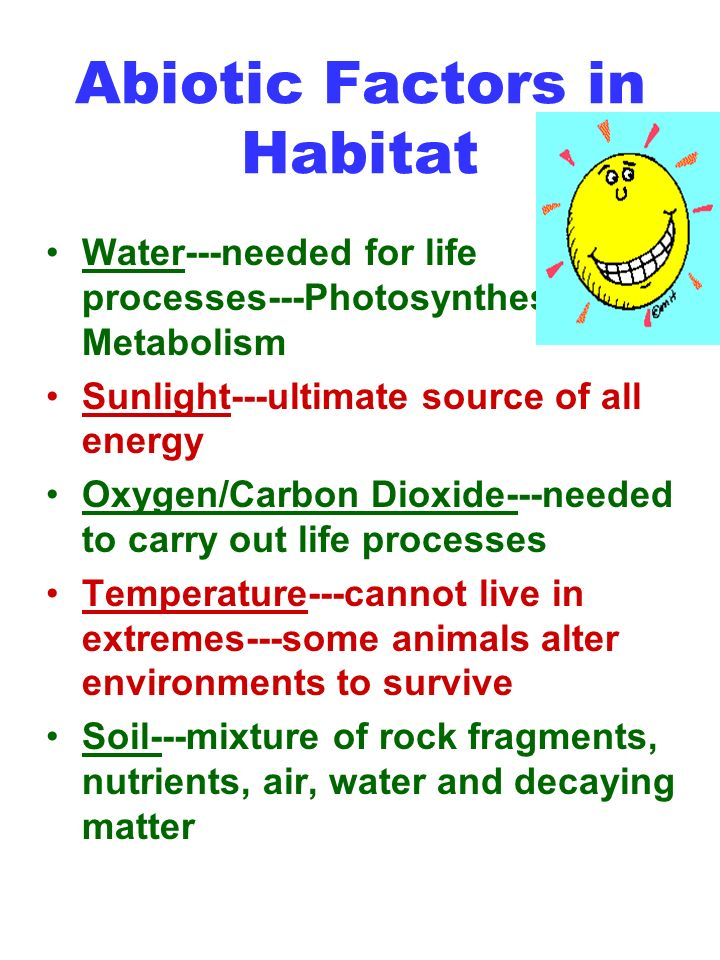 Abiotic Factors in Habitat Water---needed for life processes---Photosynthesis and Metabolism Sunlight---ultimate source of all energy Oxygen/Carbon Dioxide---needed to carry out life processes Temperature---cannot live in extremes---some animals alter environments to survive Soil---mixture of rock fragments, nutrients, air, water and decaying matter