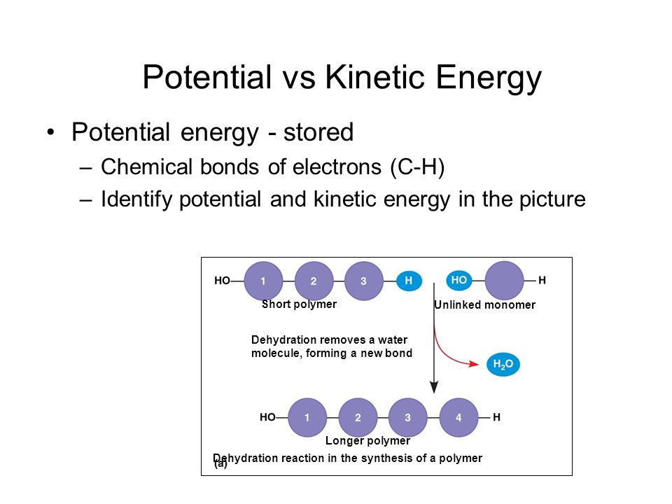 Potential vs Kinetic Energy Potential energy - stored –Chemical bonds of electrons (C-H) –Identify potential and kinetic energy in the picture Short p