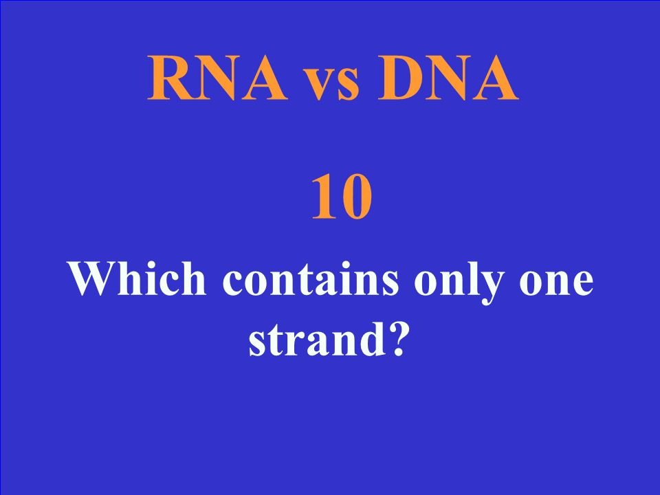 RNA vs DNA 10 Which contains only one strand?