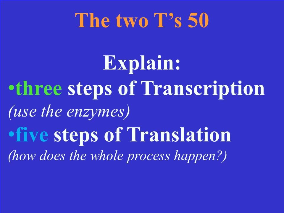 The two Ts 40 Answer Translation