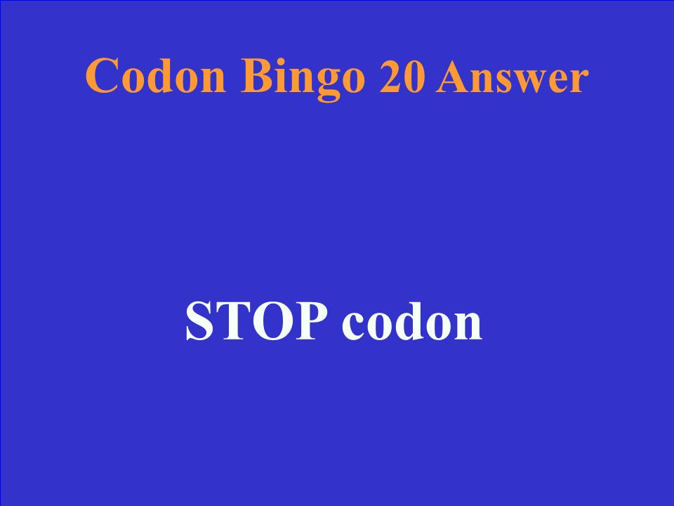 Codon Bingo 20 Find the correct Amino Acid: mRNA: UGA