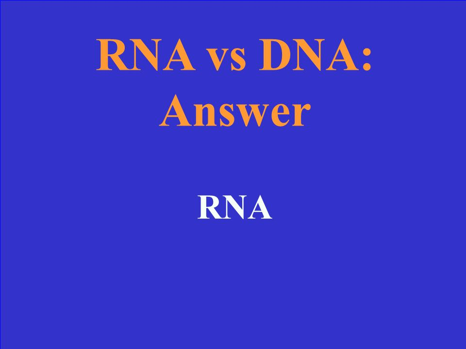 RNA vs DNA 10 Which contains only one strand