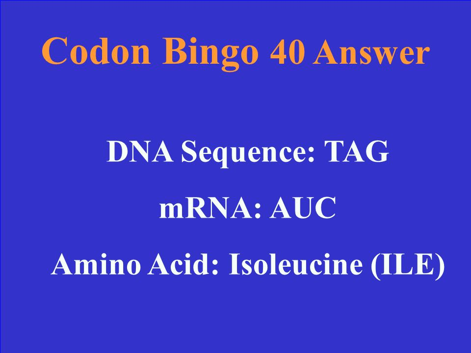 Codon Bingo 40 Find the correct Amino Acid: DNA sequence: TAG