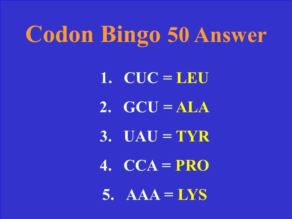 Codon Bingo 50 Find the correct Amino Acids: mRNA: 1.CUC 2.GCU 3.UAU 4.CCA 5.AAA