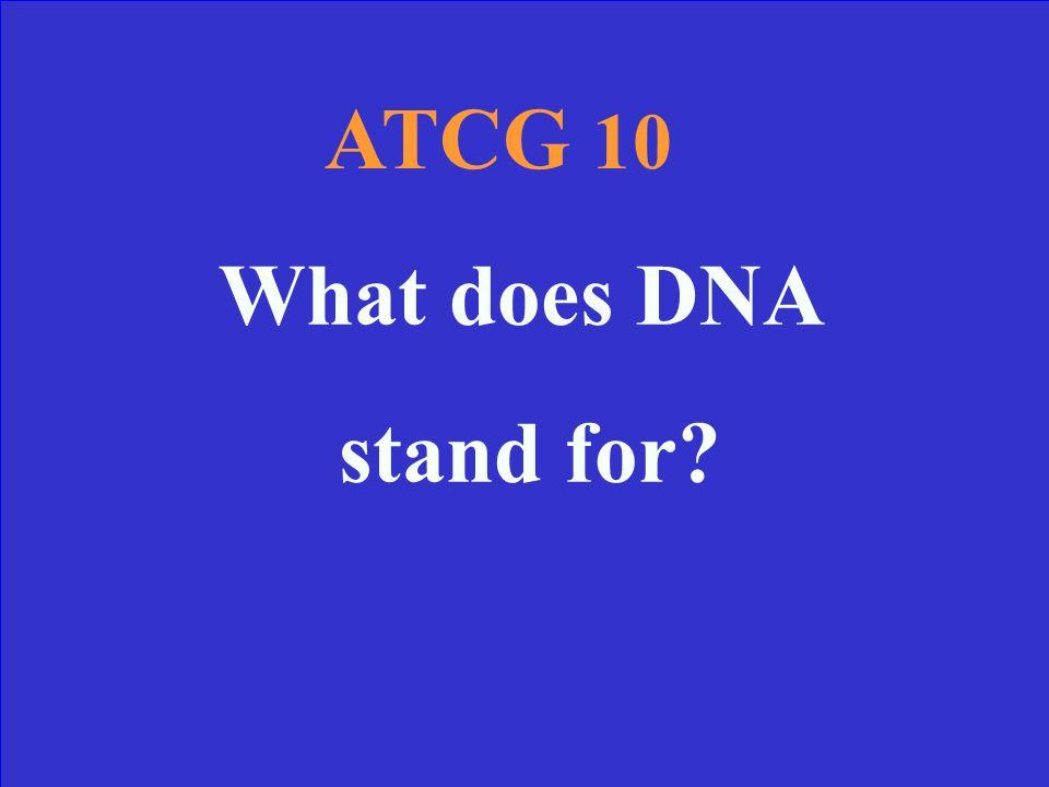 Codon Bingo 50 Answer 1.CUC = LEU 2.GCU = ALA 3.UAU = TYR 4.CCA = PRO 5.AAA = LYS