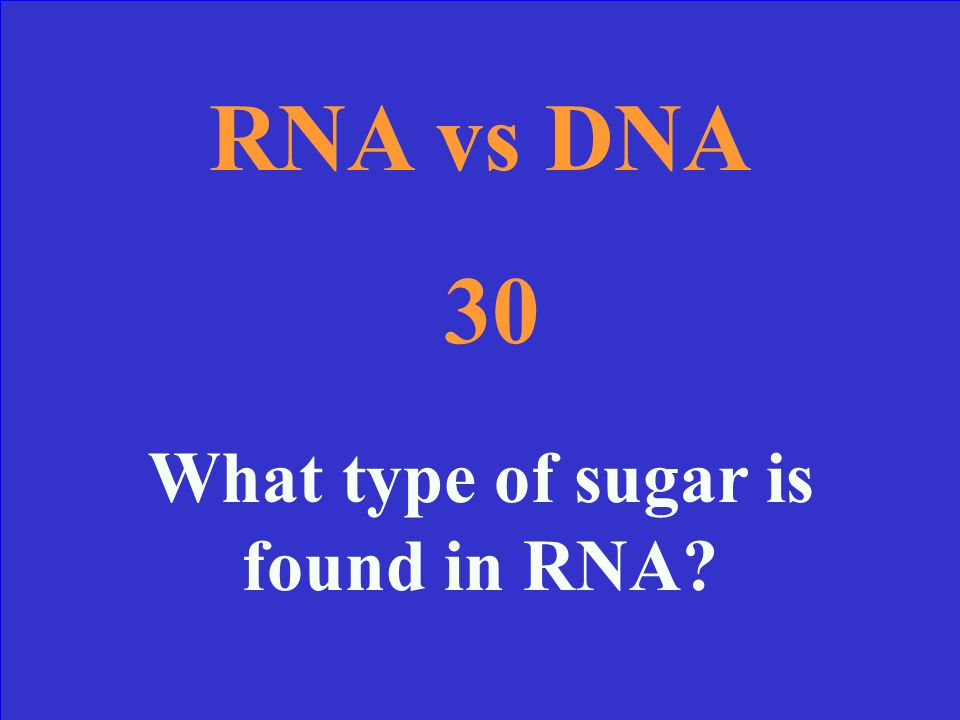 RNA vs DNA 20: Answer DNA