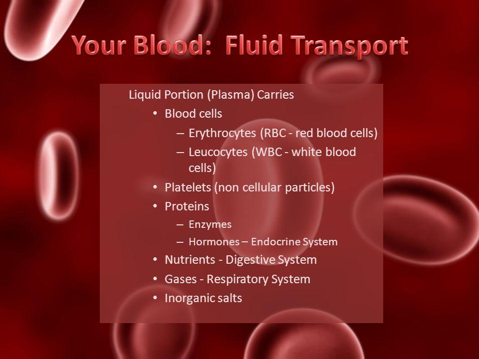 Liquid Portion (Plasma) Carries Blood cells – Erythrocytes (RBC - red blood cells) – Leucocytes (WBC - white blood cells) Platelets (non cellular part