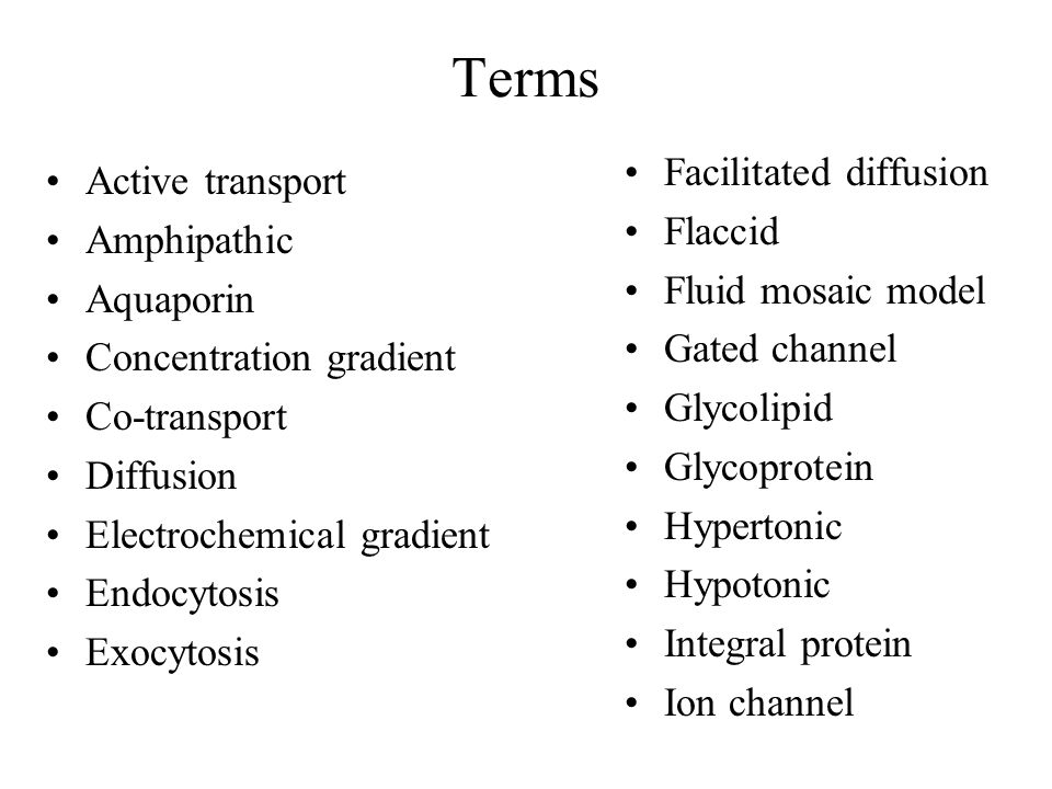 Terms Active transport Amphipathic Aquaporin Concentration gradient Co-transport Diffusion Electrochemical gradient Endocytosis Exocytosis Facilitated