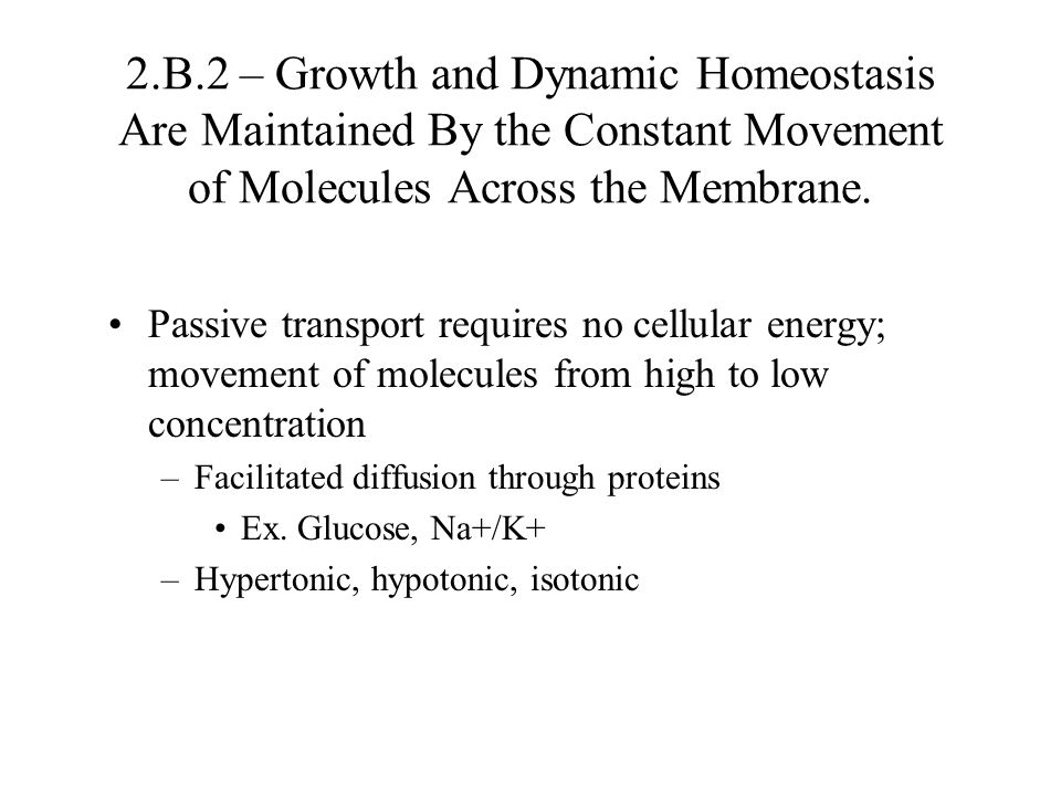 2.B.2 – Growth and Dynamic Homeostasis Are Maintained By the Constant Movement of Molecules Across the Membrane. Passive transport requires no cellula