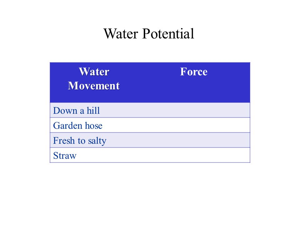 Water Potential Water Movement Force Down a hill Garden hose Fresh to salty Straw