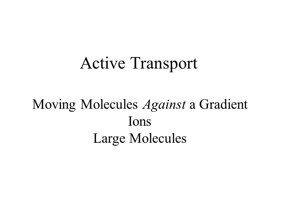 Active Transport Moving Molecules Against a Gradient Ions Large Molecules