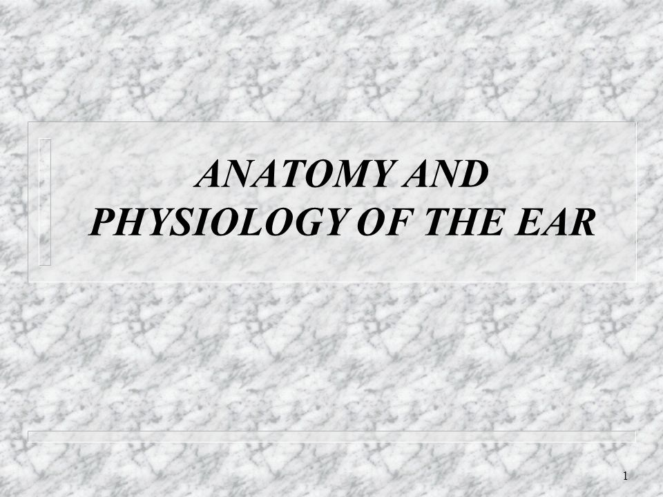 1 ANATOMY AND PHYSIOLOGY OF THE EAR