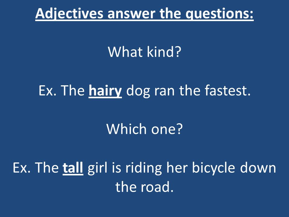 Adjectives answer the questions: What kind? Ex. The hairy dog ran the fastest. Which one? Ex. The tall girl is riding her bicycle down the road.