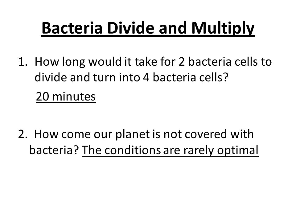 Bacteria Divide and Multiply 1.How long would it take for 2 bacteria cells to divide and turn into 4 bacteria cells? 20 minutes 2. How come our planet
