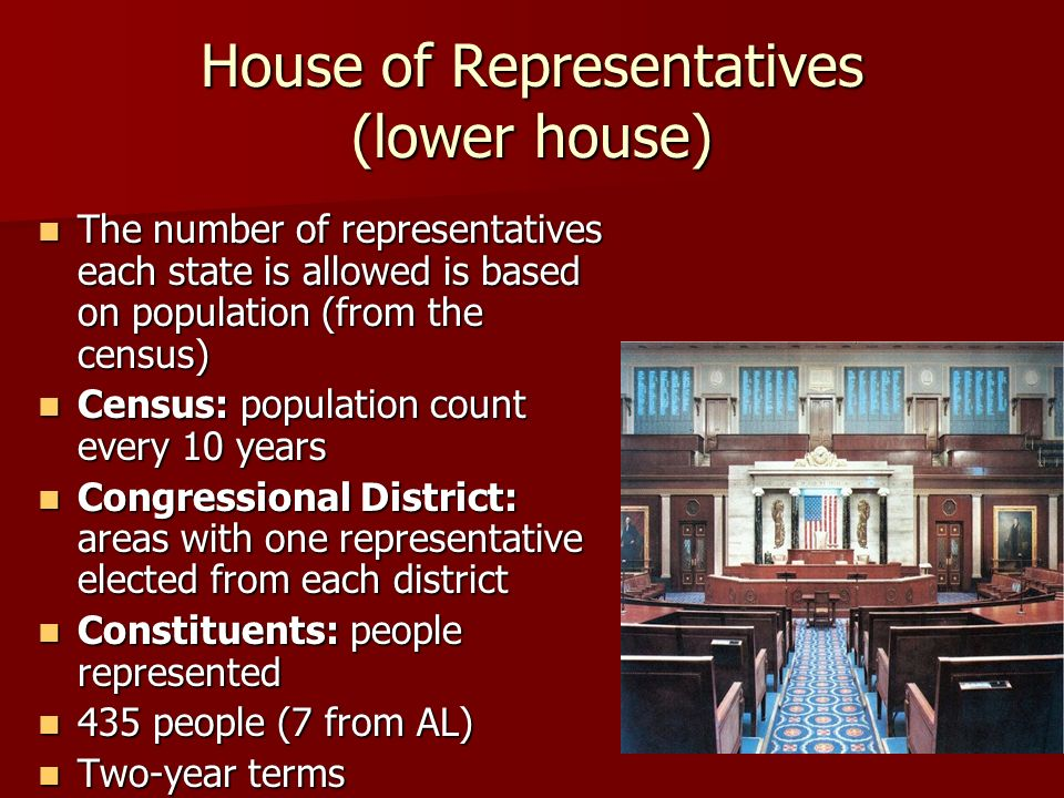 House of Representatives (lower house) The number of representatives each state is allowed is based on population (from the census) The number of representatives each state is allowed is based on population (from the census) Census: population count every 10 years Census: population count every 10 years Congressional District: areas with one representative elected from each district Congressional District: areas with one representative elected from each district Constituents: people represented Constituents: people represented 435 people (7 from AL) 435 people (7 from AL) Two-year terms Two-year terms
