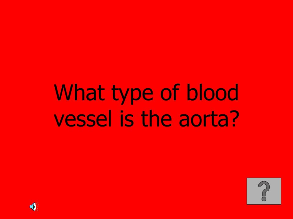 What type of blood vessel is the aorta?