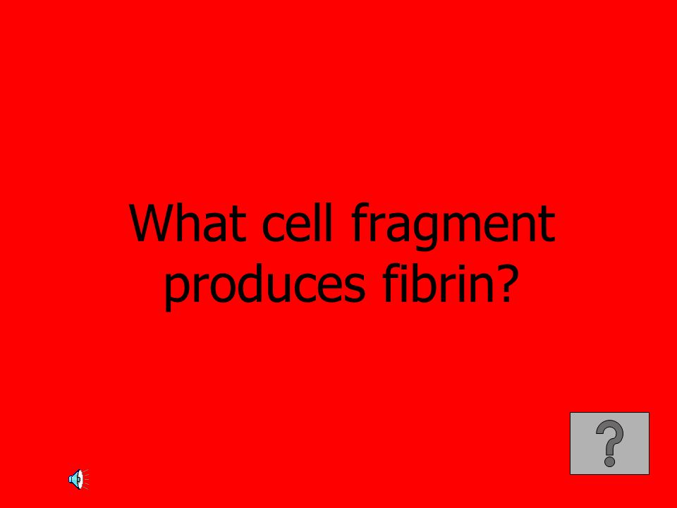 What cell fragment produces fibrin?