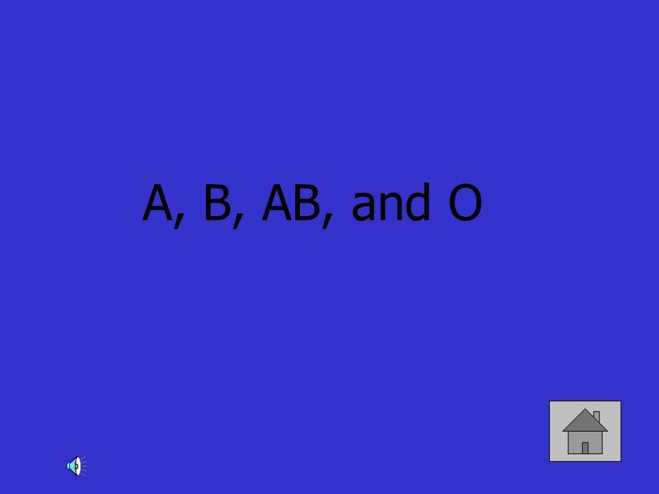 A, B, AB, and O