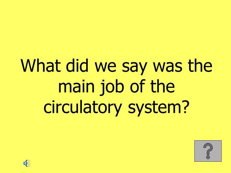 What did we say was the main job of the circulatory system?