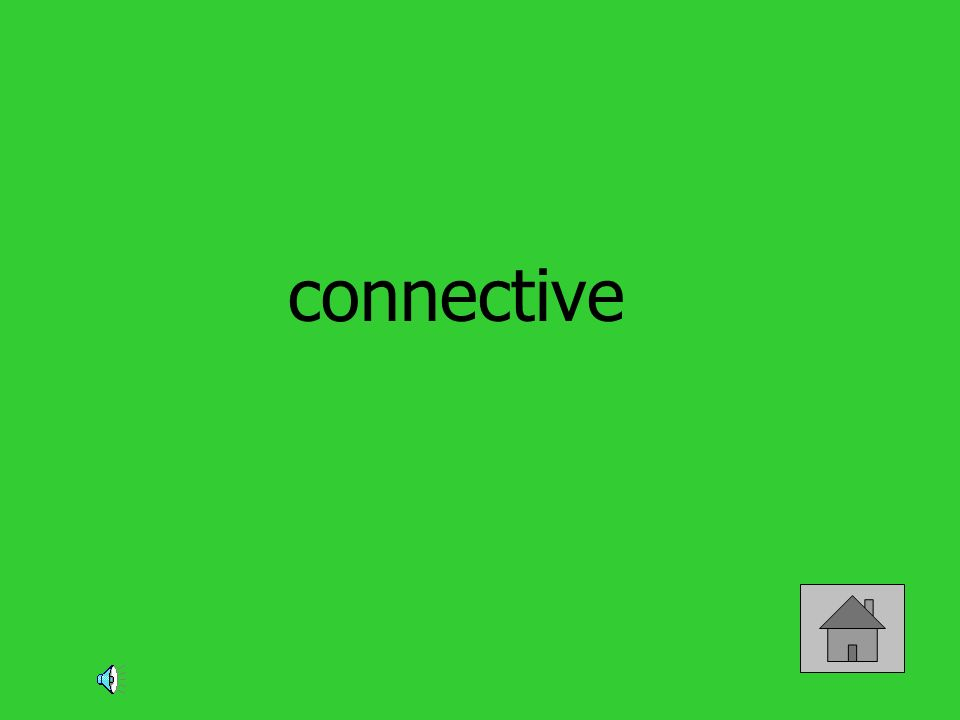 connective