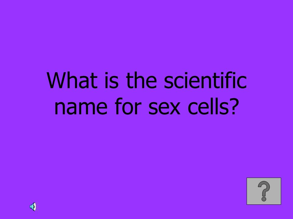 What is the scientific name for sex cells?