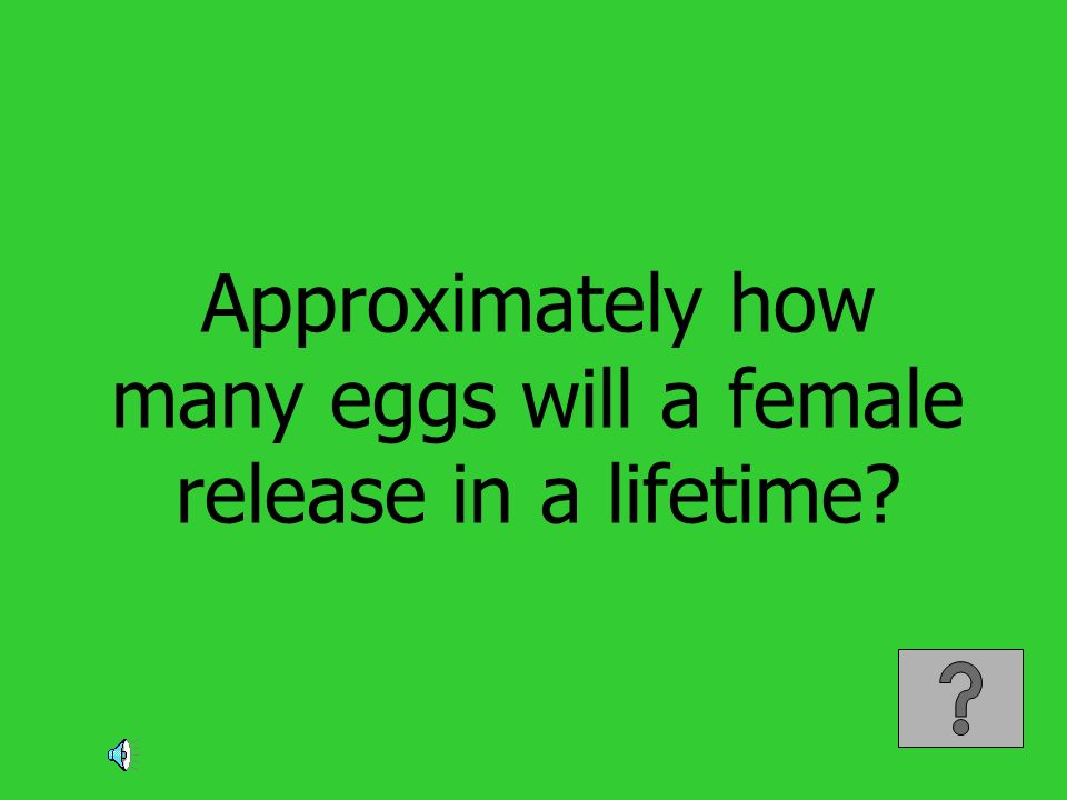 Approximately how many eggs will a female release in a lifetime?