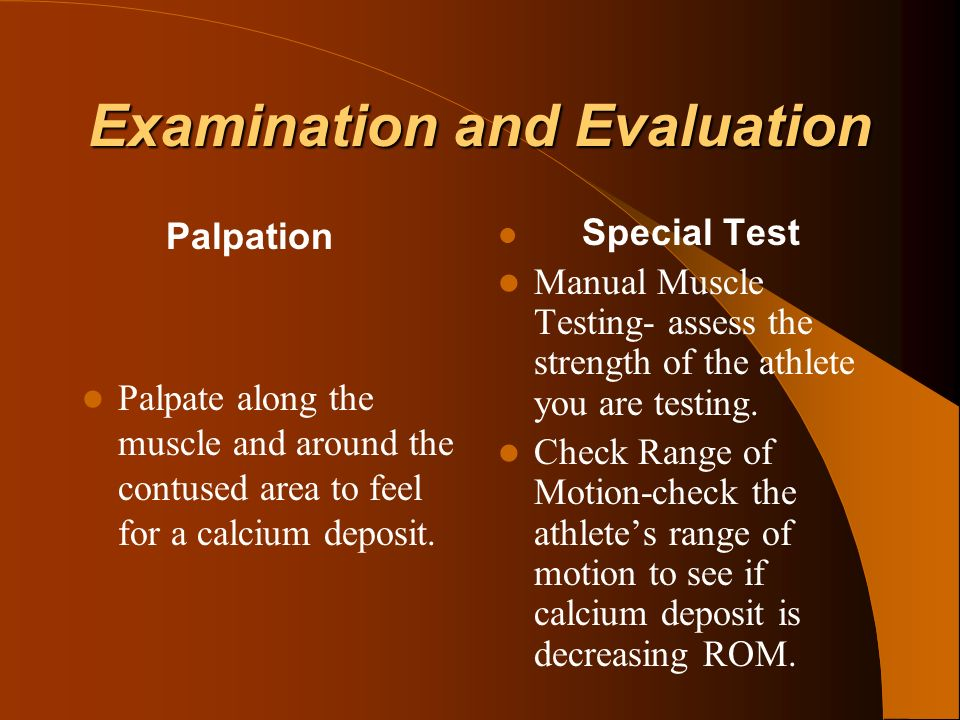 Examination and Evaluation Palpation Palpate along the muscle and around the contused area to feel for a calcium deposit. Special Test Manual Muscle T