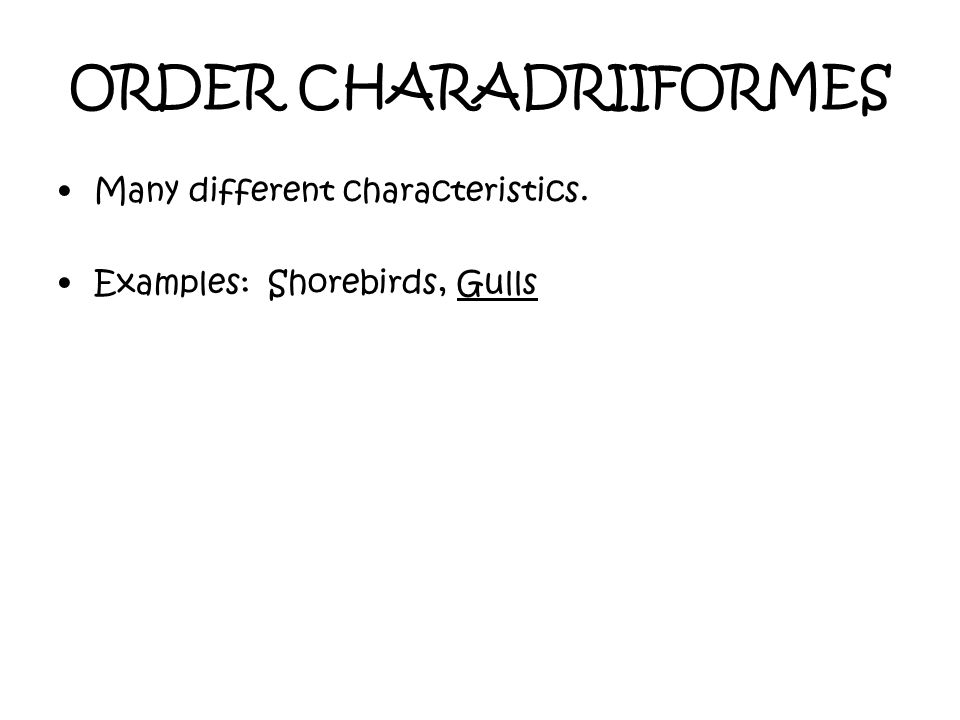 ORDER CHARADRIIFORMES Many different characteristics. Examples: Shorebirds, Gulls