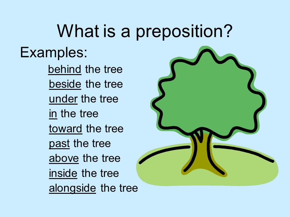 What is a preposition? Examples: behind the tree beside the tree under the tree in the tree toward the tree past the tree above the tree inside the tr